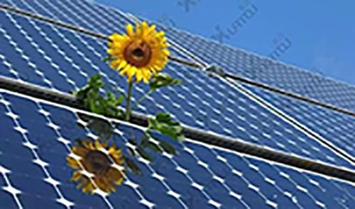 能源行业的主角为什么必须是国企?